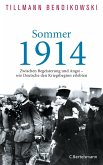 Sommer 1914 (eBook, ePUB)