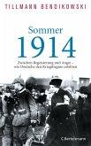 Sommer 1914 (eBook, ePUB)