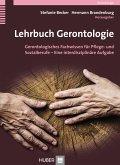 Lehrbuch Gerontologie für Pflegende und Sozialarbeitende