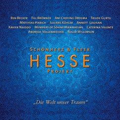 Hesse Projekt (MP3-Download)