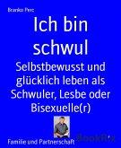 Ich bin schwul (eBook, ePUB)