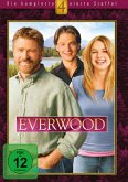 Everwood - Die komplette 4. Staffel