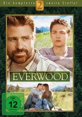 Everwood - Die komplette 2. Staffel