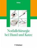 Notfallchirurgie bei Hund und Katze (eBook, PDF)