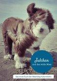 Julchen und das wilde Meer (eBook, ePUB)