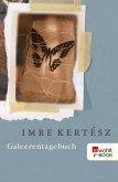 Galeerentagebuch (eBook, ePUB)