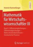 Mathematik für Wirtschaftswissenschaftler III
