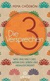 Die 3 Versprechen (eBook, ePUB)