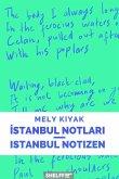 Istanbul Notlari/Istanbul Notizen (eBook, ePUB)
