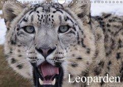 Leoparden (Wandkalender immerwährend DIN A4 quer) - Stanzer, Elisabeth