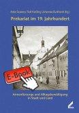 Prekariat im 19. Jahrhundert (eBook, ePUB)