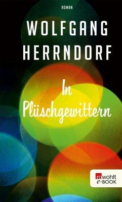 In Plüschgewittern (eBook, ePUB) - Herrndorf, Wolfgang