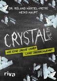 Crystal Meth (eBook, ePUB)