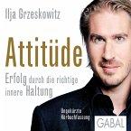 Attitüde (MP3-Download)