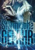 Stürmische Gefahr / Special Agents of Justice Bd.1 (eBook, ePUB)