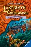 Schurkenjagd im Schloss / Labyrinth der Geheimnisse Bd.5 (eBook, ePUB)
