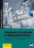 Chemische Experimente zu Alltagsphänomenen (eBook, PDF)