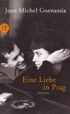 Eine Liebe in Prag (eBook, ePUB)