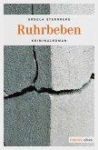 Ruhrbeben (eBook, ePUB)