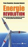 Energierevolution (eBook, PDF)