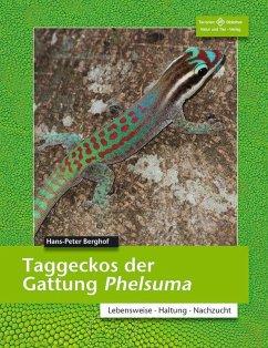Taggeckos der Gattung Phelsuma - Berghof, Hans-Peter
