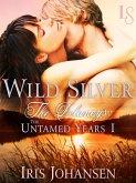 Wild Silver: The Delaneys (eBook, ePUB)