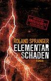 Elementarschaden (eBook, ePUB)