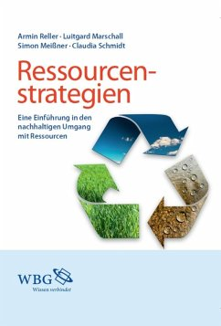 Ressourcenstrategien (eBook, ePUB)