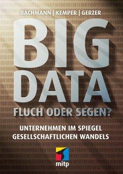 Big Data - Fluch oder Segen? (eBook, ePUB) - Bachmann, Ronald; Kemper, Guido; Gerzer, Thomas
