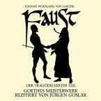 Faust: Der Tragödie erster Teil, 2 Audio-CDs