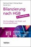 Bilanzierung nach HGB in Schaubildern (eBook, PDF)