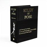 Study of Pose
