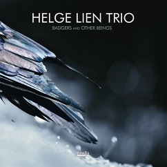 Badgers And Other Beings - Lien,Helge Trio