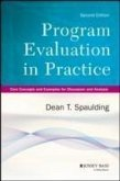 Program Evaluation in Practice (eBook, PDF)