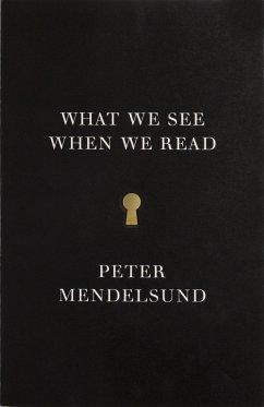 What We See When We Read - Mendelsund, Peter
