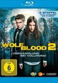 Wolfblood - Verwandlung bei Vollmond: Staffel 2 (2 Discs)