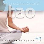 Tao-Stress Und Herausforderungen Bewältigen