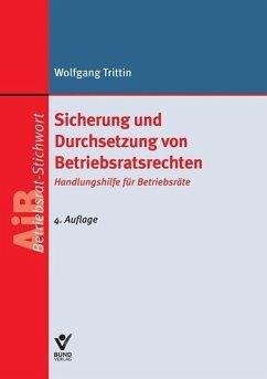 Sicherung und Durchsetzung von Betriebsratsrechten (eBook, ePUB) - Trittin, Wolfgang