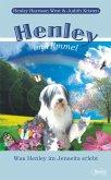 Henley im Himmel (eBook, ePUB)