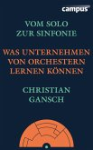 Vom Solo zur Sinfonie (eBook, PDF)