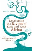 Developing the Rivers of East and West Africa (eBook, PDF)