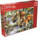 Jumbo 17037 - Bengaltiger, Puzzle, 1500 Teile