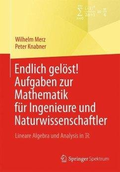 Endlich gelöst! Aufgaben zur Mathematik für Ingenieure und Naturwissenschaftler - Merz, Wilhelm; Knabner, Peter
