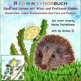 RIONNY Hörbuch: Sei nicht traurig, kleine Pusteblume. Ach du dickes Ei. (MP3-Download)