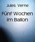 Fünf Wochen im Ballon (eBook, ePUB)