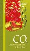 CO2 (eBook, PDF)