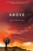 Above (eBook, ePUB)