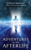 Adventures in the Afterlife (eBook, ePUB)