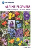Alpine Flowers (eBook, ePUB)