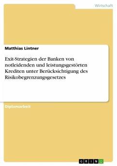 Exit-Strategien der Banken von notleidenden und leistungsgestörten Krediten unter Berücksichtigung des Risikobegrenzungsgesetzes (eBook, ePUB)